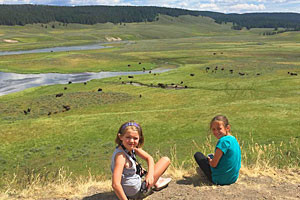 Big Sky Adventures & Tours - Lamar Valley trips