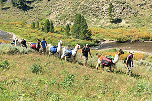 In Our Nature - Guided Hiking trips in the Park