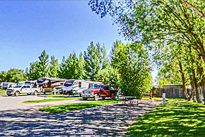 Osen's RV Park - 1 hour from YNP North Entrance