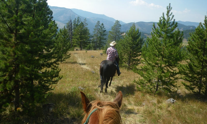 Horseback Riding at Big Sky