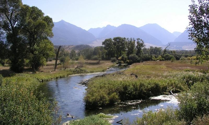 Livingston Montana Ohair Spring Creek