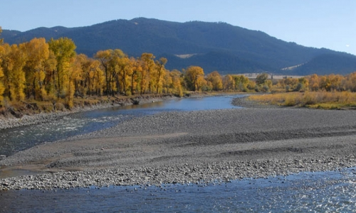 Yellowstone River in Livingston