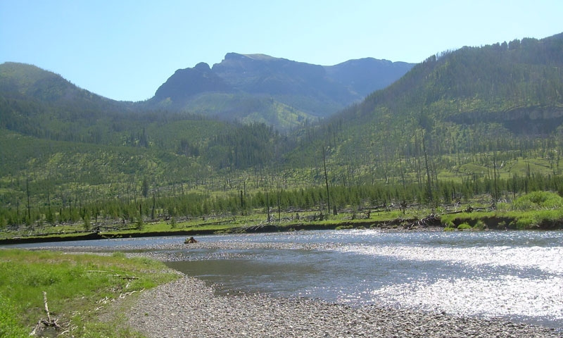 Slough Creek