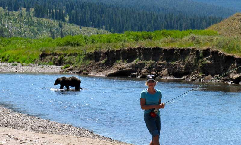 Slough creek yellowstone fly fishing campground alltrips for Yellowstone national park fishing