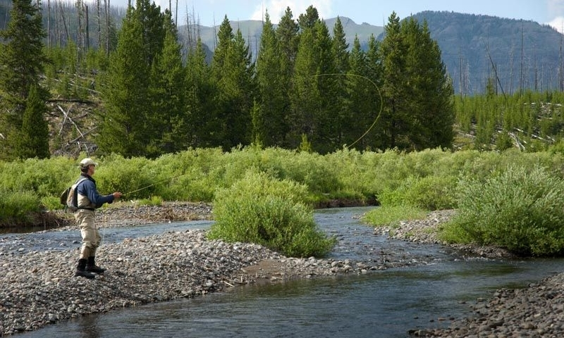 Slough Creek Yellowstone Fly Fishing, Campground - AllTrips