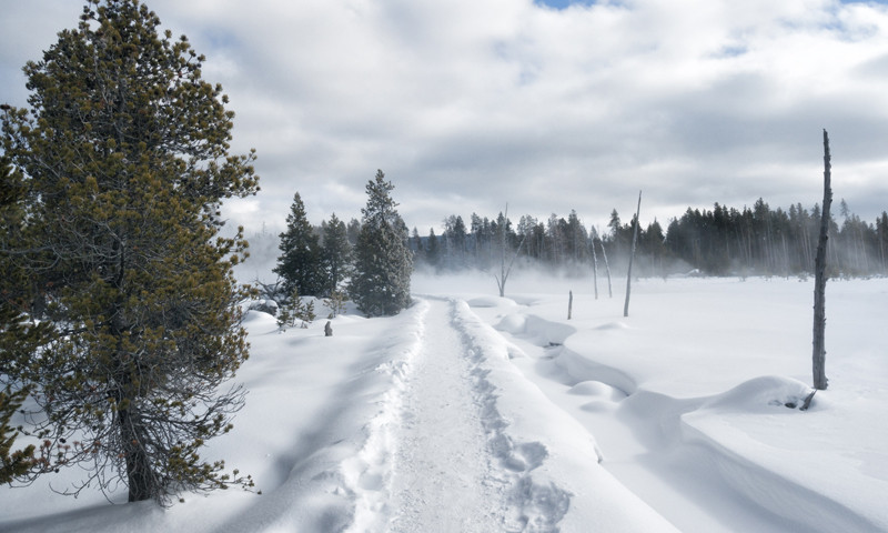 yellowstone national park winter trail