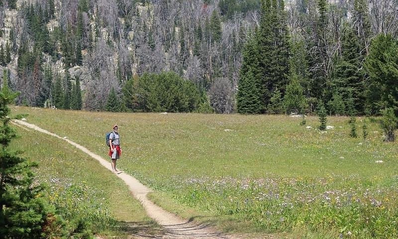 Madison Range Beehive Basin Hiking Trail near Big Sky
