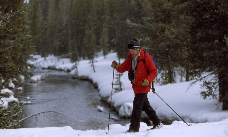 Cross Country Skiing in Yellowstone