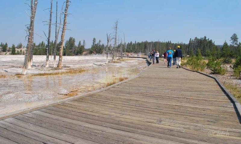 Boardwalk to Fountain Paint Pots in Yellowstone