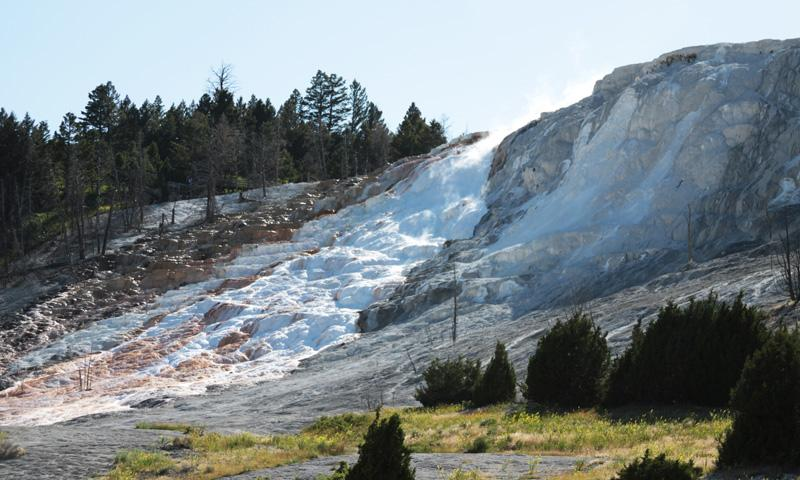 Mammoth Hot Springs Terrace in Yellowstone