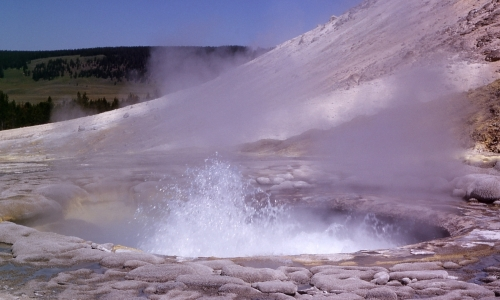 Sulphur Caldron Yellowstone Park