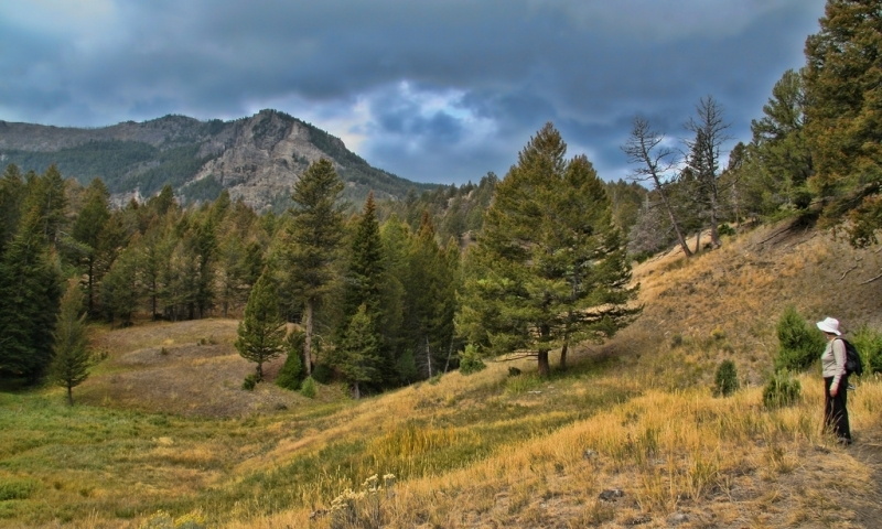 Hiking Trail to Beaver Ponds near Mammoth Hot Springs