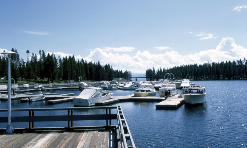 Bridge Bay Marina Yellowstone