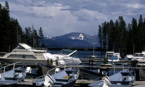 Bridge Bay Marina Yellowstone Lake