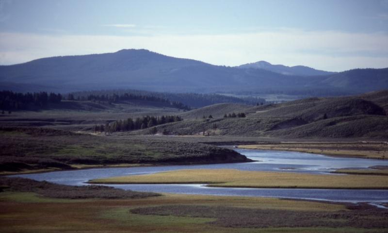 Hayden Valley Yellowstone National Park Alltrips