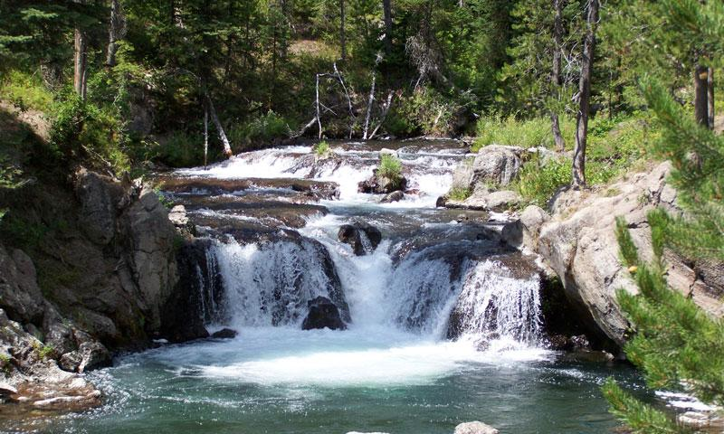 Bechler River in Yellowstone