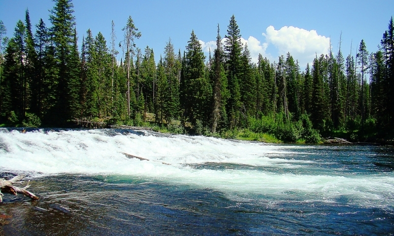 Fall River Wyoming Fly Fishing Camping Boating Alltrips