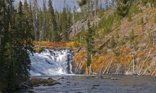 Yellowstone Waterfalls Lewis Falls