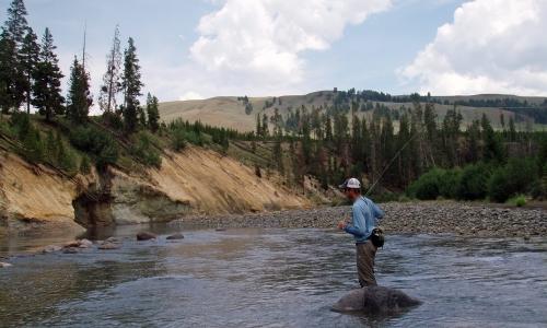 Lamar River Yellowstone National Park