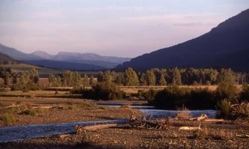 Lamar River Yellowstone Park