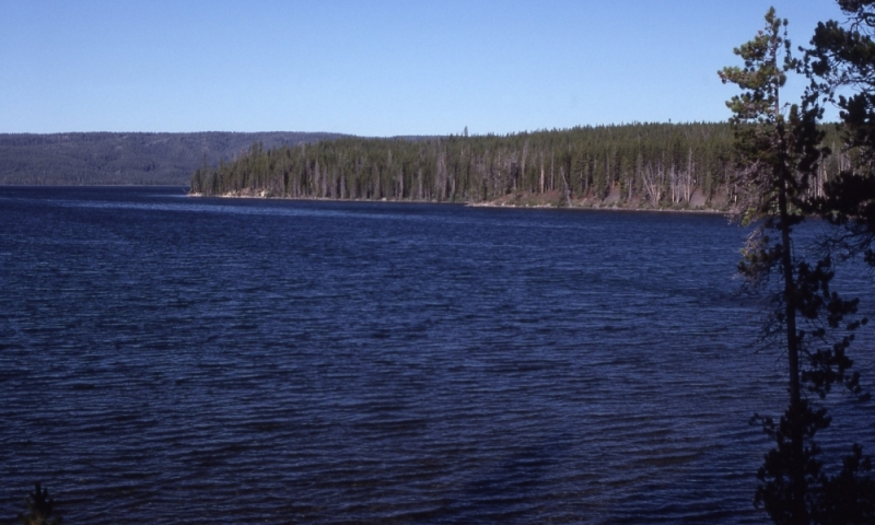 Shoshone Lake Yellowstone