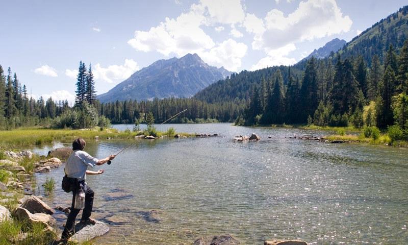 Snake River Yellowstone National Park Fly Fishing Camping Boating