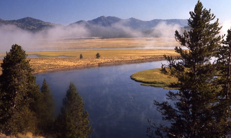 Yellowstone River Yellowstone Hayden Valley