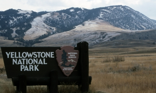 Mammoth Hot Springs Yellowstone North Entrance