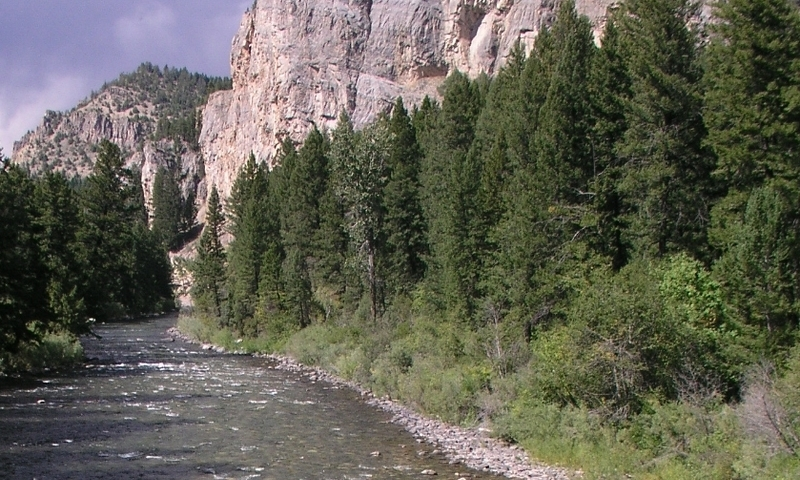 Gallatin River Yellowstone