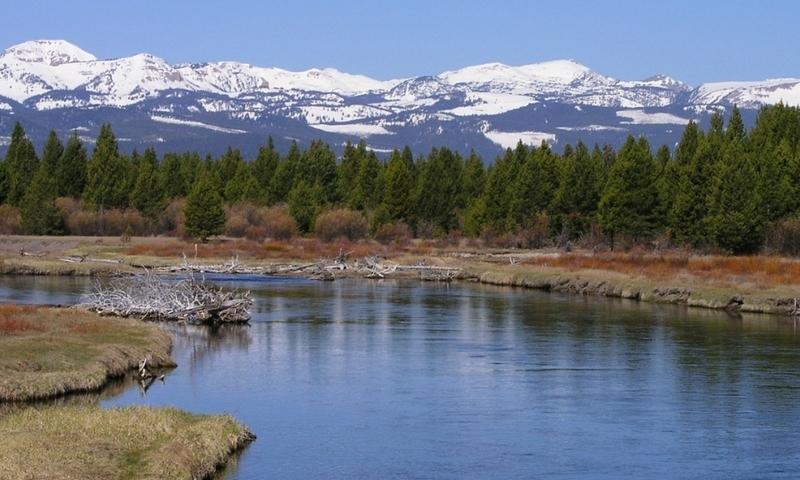 Madison River Montana Fishing