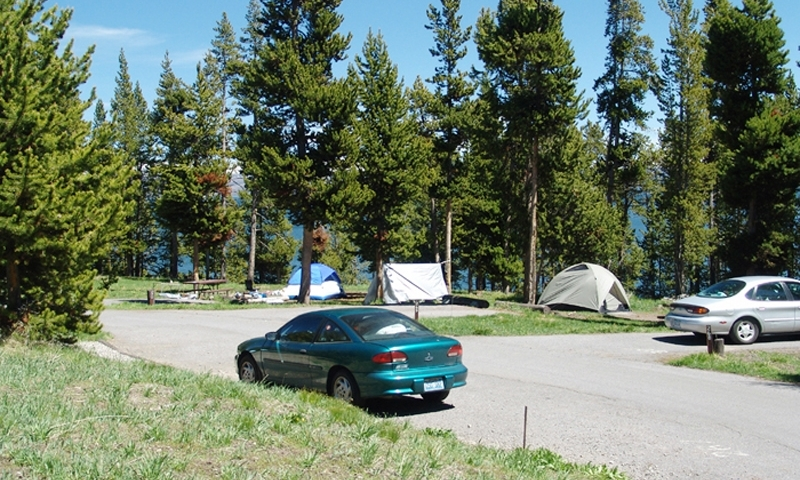 Bridge Bay Campground Yellowstone National Park Alltrips