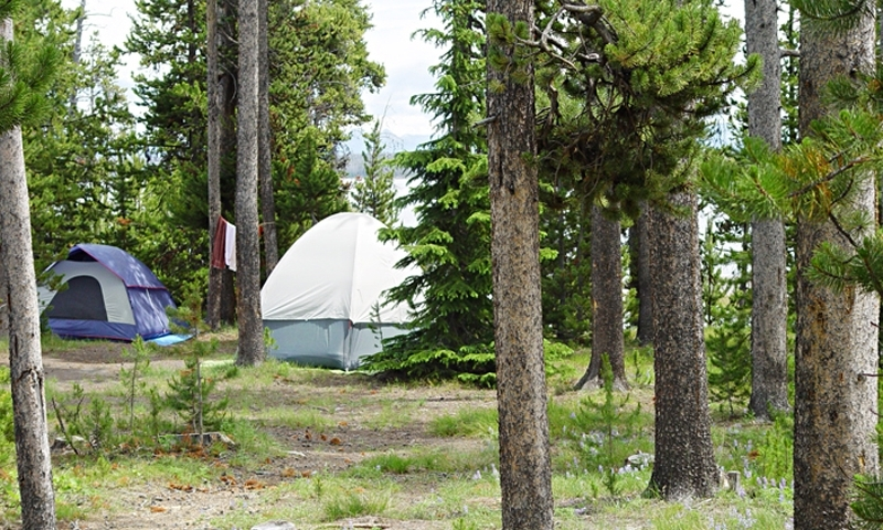 Grant Village Campground Yellowstone Camping Alltrips