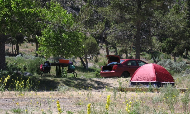 Mammoth Hot Springs Campground Yellowstone