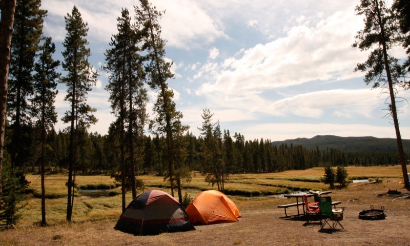 Norris Campground Yellowstone Camping Alltrips