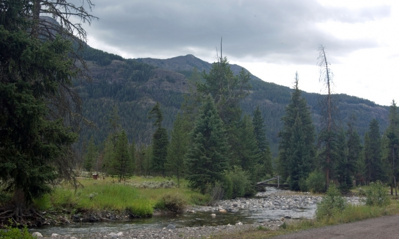 Pebble Creek Campground Yellowstone Camping Alltrips