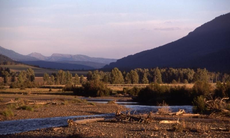 Lamar Valley Yellowstone Park