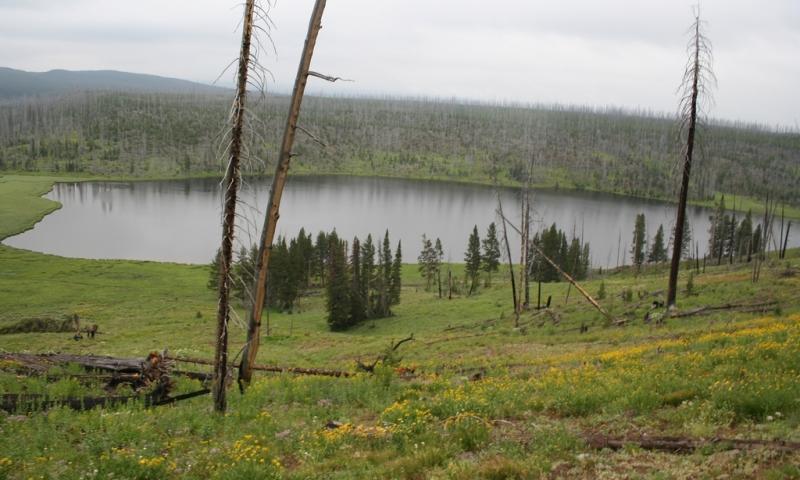 Cascade Lake near Canyon Village in Yellowstone