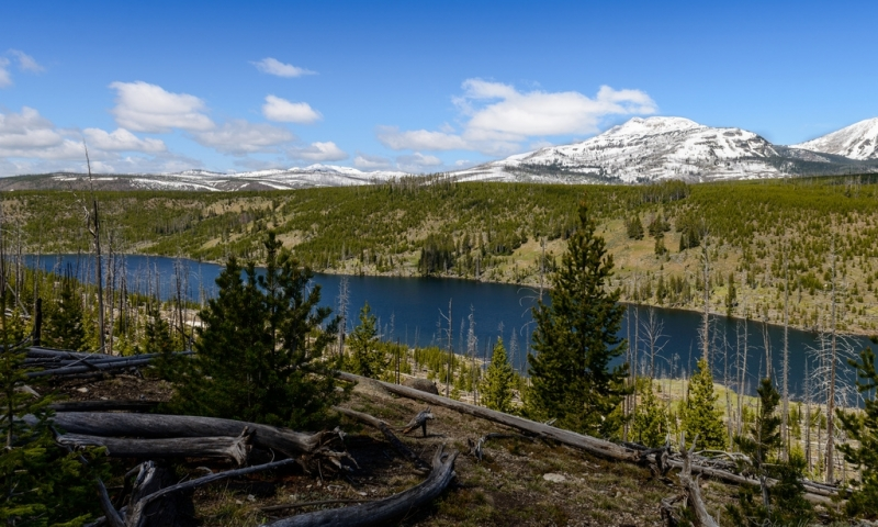 Grizzly Lake near Norris Basin in Yellowstone