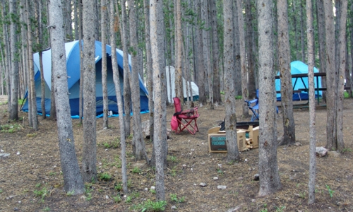 Yellowstone National Park Campgrounds Camping Canyon Campground