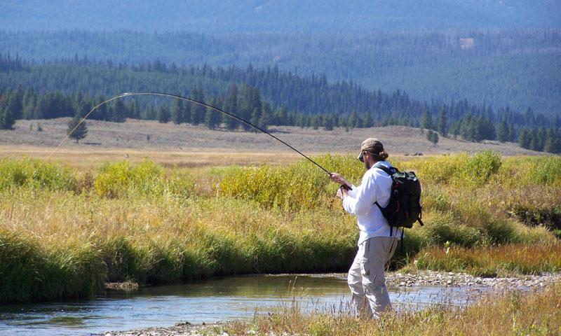 yellowstone national park fishing guides fly shops