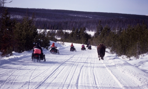 Yellowstone Snowmobile Tours