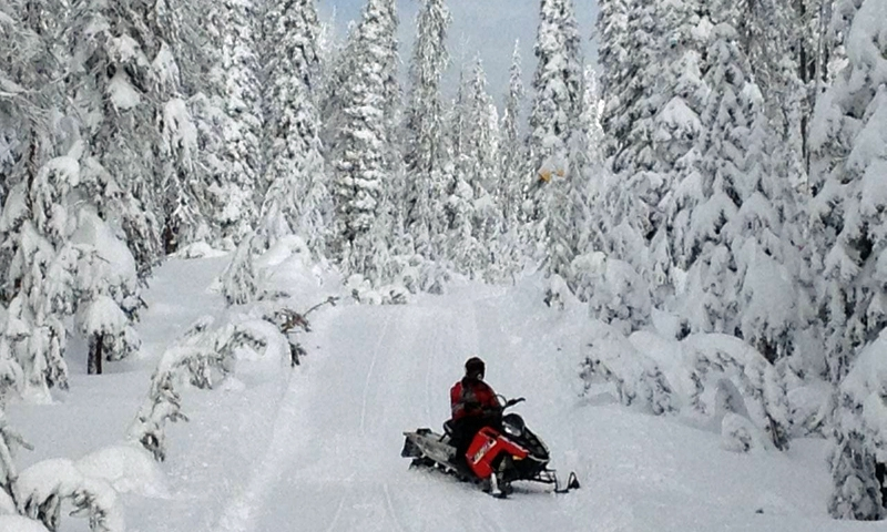 Yellowstone Snowmobiling Snowmobile Rentals Amp Tours