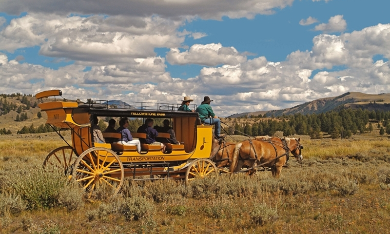 Stagecoach Ride in Yellowstone