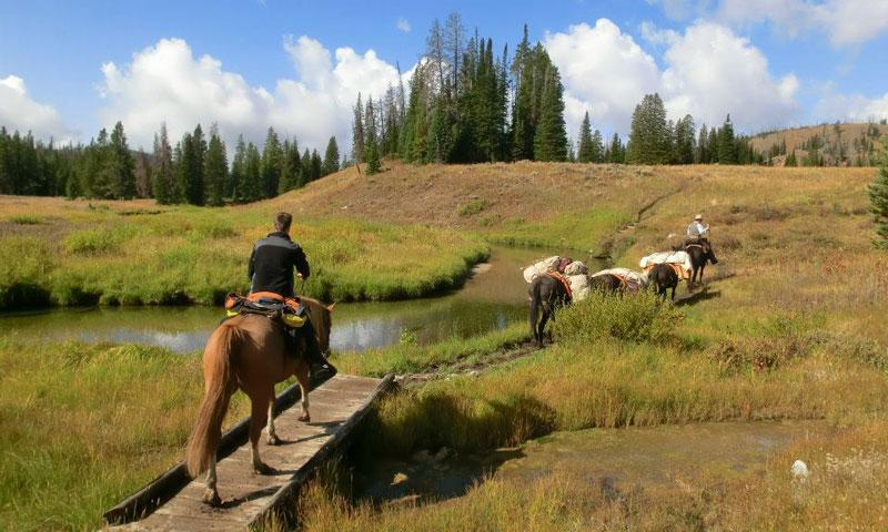Horse Pack Trip near the Upper Gallatin River