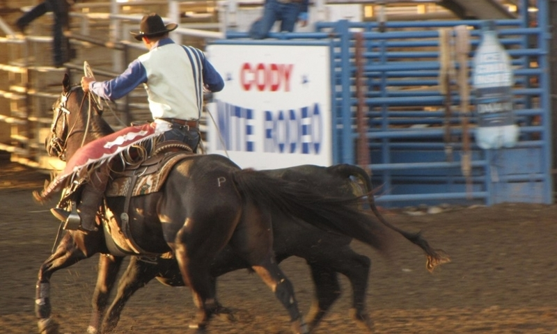 Cody Nite Rodeo in Wyoming