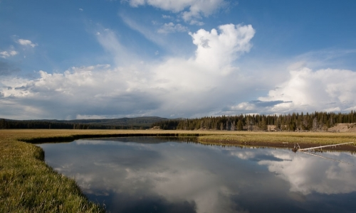 Pelican Creek Yellowstone Hiking