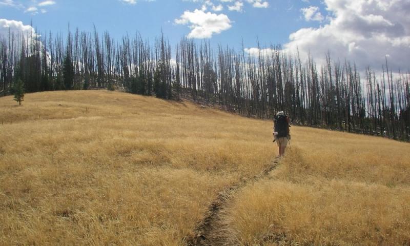 Yellowstone Day Hiking