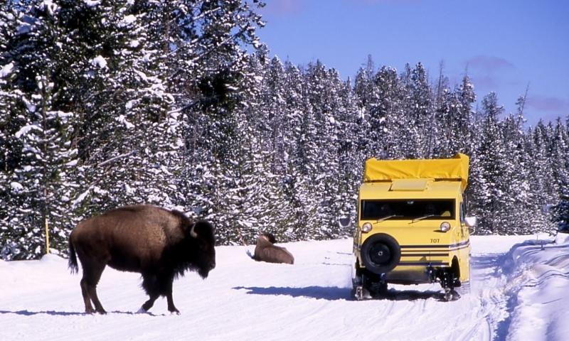 Yellowstone National Park Snow Coach Winter Tours Alltrips